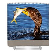 What A Catch  Shower Curtain