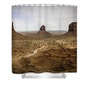 100 Shower Curtain