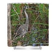 100- Great Blue Heron Shower Curtain