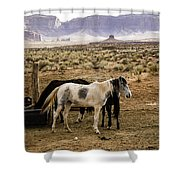 102 Shower Curtain