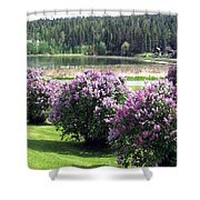 103 Mile Lake Lilacs Shower Curtain