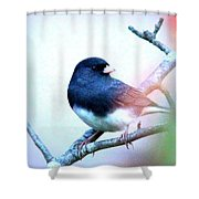 1052 - Junco Shower Curtain