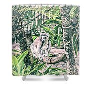 10773 Cotton Topped Tamarin Shower Curtain