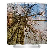 10913 I Am Groot Shower Curtain