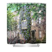10th Street Wisteria Shower Curtain