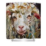 10x10 Sheep Shower Curtain