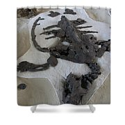 Centro De Investigaciones Paleontologicas Shower Curtain