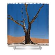Dead Vlei Shower Curtain