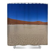 Death Tree Hidden Vlei Shower Curtain