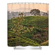 Nuwara Eliya - Sri Lanka Shower Curtain