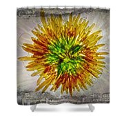 11262 Flower Abstract Series 02 #16a Shower Curtain