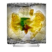 11264 Flower Abstract Series 02 #17 - Carnation Shower Curtain