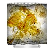 11265 Flower Abstract Series 02 #18 - Carnation 2 Shower Curtain