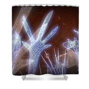 11288 Ghost Of Lost Souls Series 07-01 Shower Curtain