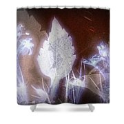 11291 Ghost Of Lost Souls Series 07-04 Shower Curtain