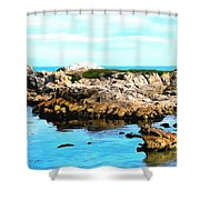 West Coast Seascape 2 Shower Curtain