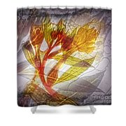 11315 Flower Abstract Series 03 #13 Shower Curtain