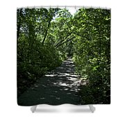 1174, Forest Path Shower Curtain