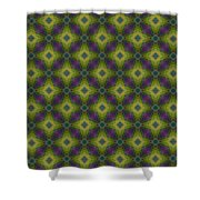 Arabesque 049 Shower Curtain