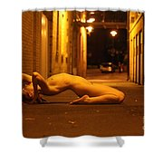 Anita De Bauch Shower Curtain
