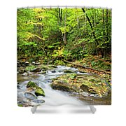 1266 Great Smoky Mountain National Park Shower Curtain
