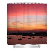 13- Crimson Dream Shower Curtain
