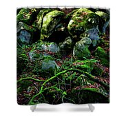 Fontainebleau Forest Shower Curtain