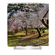 Nara Japan Shower Curtain