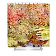 Stream In Autumn, Pocono Mountains, Pennsylvania Shower Curtain