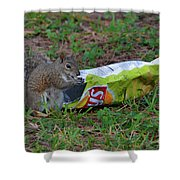 14- Chip Lovin' Squirrel Shower Curtain