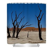 Dead Vlei Shower Curtain