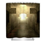 Mental Asylum Haunted Shower Curtain