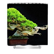 Landscape Nature Drawing Shower Curtain