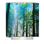 Painting Landscape Shower Curtain