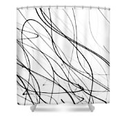 14166 Shower Curtain