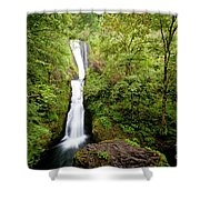 1418 Bridal Veil Falls Shower Curtain