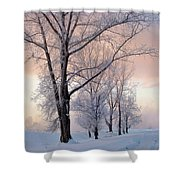 Amazing Landscape With Frozen Snow Covered Trees At Sunrise   Shower Curtain