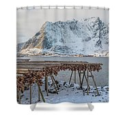 Reine, Lofoten - Norway Shower Curtain