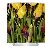 Tulips Wilting Shower Curtain