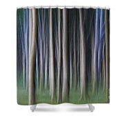 150403p262 Shower Curtain