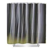 150403p263 Shower Curtain