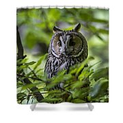150501p136 Shower Curtain