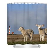 150709p308 Shower Curtain