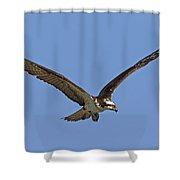 151105p332 Shower Curtain