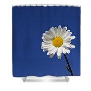 151124p253 Shower Curtain