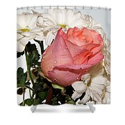 Beautiful Rose Shower Curtain