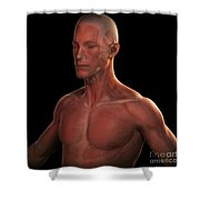 Facial Muscles Shower Curtain