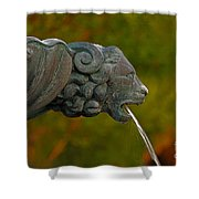 16- Fountain Shower Curtain