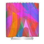 160431a  Shower Curtain
