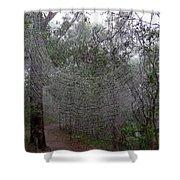 Australia - The Spider Shower Curtain